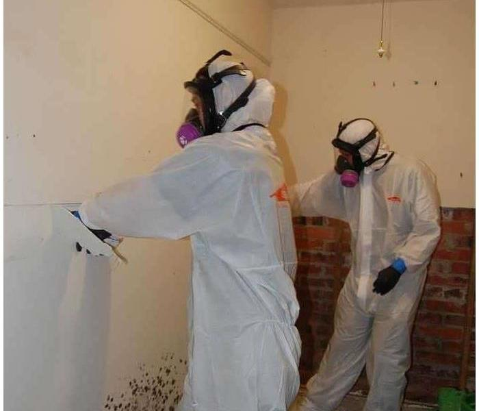 Mold Remediation We follow strict guidelines for mold remediation