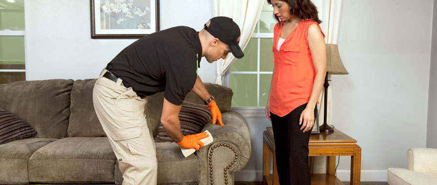 Wichita Falls, TX carpet upholstery cleaning