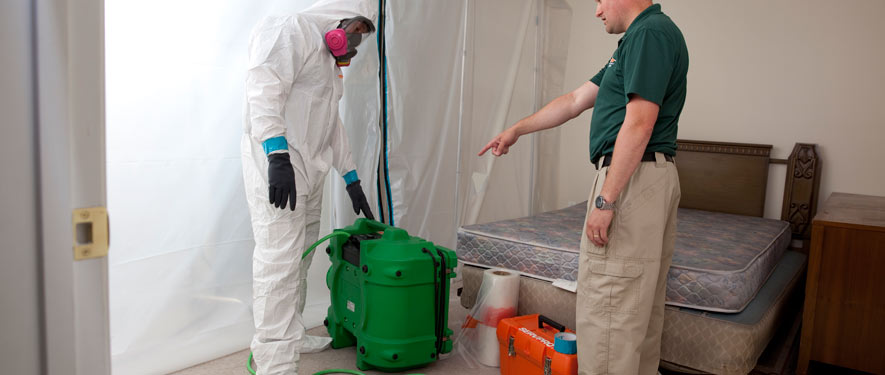 Wichita Falls, TX mold removal process